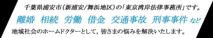 千葉県浦安市(新浦安/舞浜)の弁護士「東京湾岸法律事務所」です。離婚、相続、労働、借金、交通事故、刑事事件など、地域社会のホームドクターとして、皆さまのお悩みを解決します。